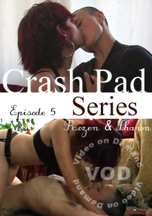 Crash Pad 05 queer porn film